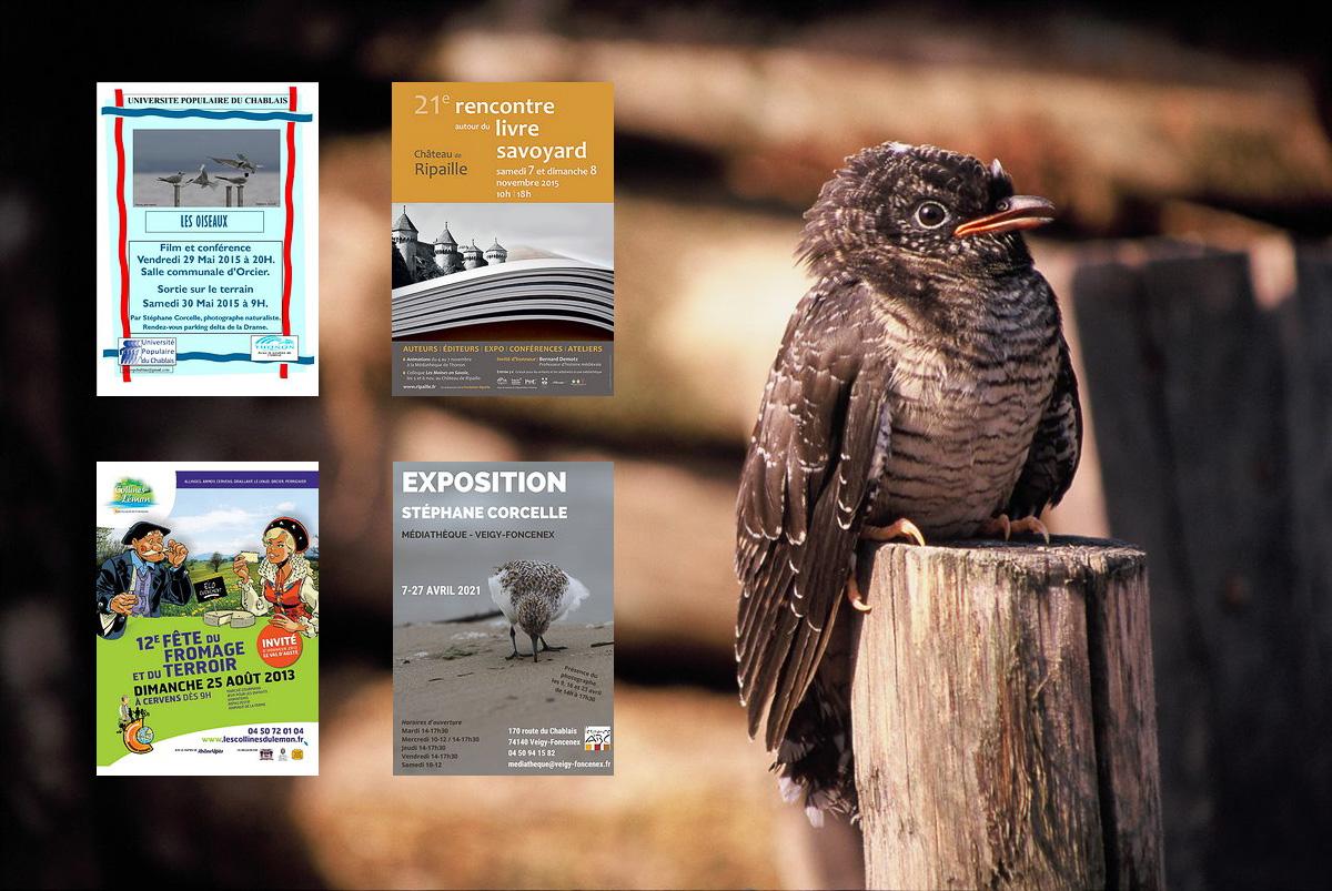 archive-expos-1998-2015.jpg