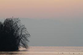 stephane-corcelle-paysage-lac-leman.JPG